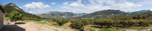 IMG_4379-Panorama